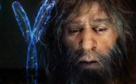 Y-хромосома современных людей похожа на неандертальскую