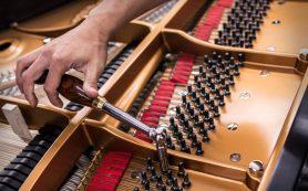 Создание эффективного заработка при помощи настройки фортепиано