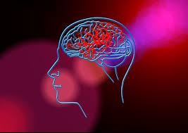 Последствия инсульта можно предсказать по анализу крови