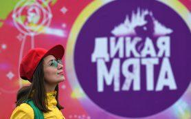 Правительство Тульской области допустило проведение фестиваля «Дикая Мята»