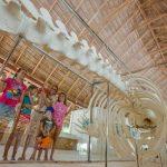 Kuramathi Maldives – главный в вопросах экологии