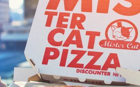 Доставка продукции Mister Cat