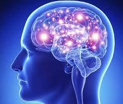 Ученые обнаружили предвестники инсульта, которые появляются за 10 лет