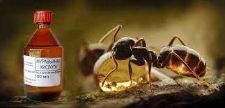 Откуда в воздухе берётся лишняя муравьиная кислота?