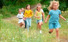 Леса и парки возле дома и школы хорошо влияют на психику и когнитивные способности детей