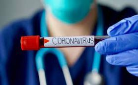 Против коронавируса нашли суперантитело